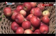 स्याउले बजार पाएपछि जुम्लाका कृषकहरु आत्मनिर्भर - NEWS24 TV