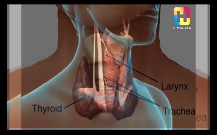 Dr. Anshumali Joshi (Thyroid Specialist) - Interview - Health Station