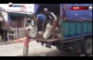 भारतले विनाकारण नेपाली अदुवाको आयात रोकेपछि अदुवा किसानहरु कष्टमा - MAIN NEWS