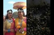 अाहा, स्वादिलाे घुँघी खाने कि माघीमा | PRIME STORY